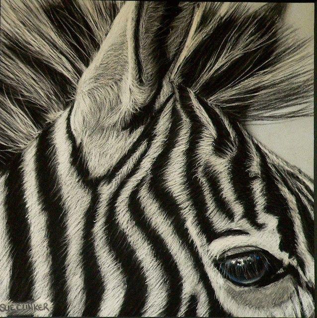 638x640 1049 Best Draw Art Zebra Images On Animal Drawings