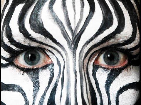 480x360 Zebra
