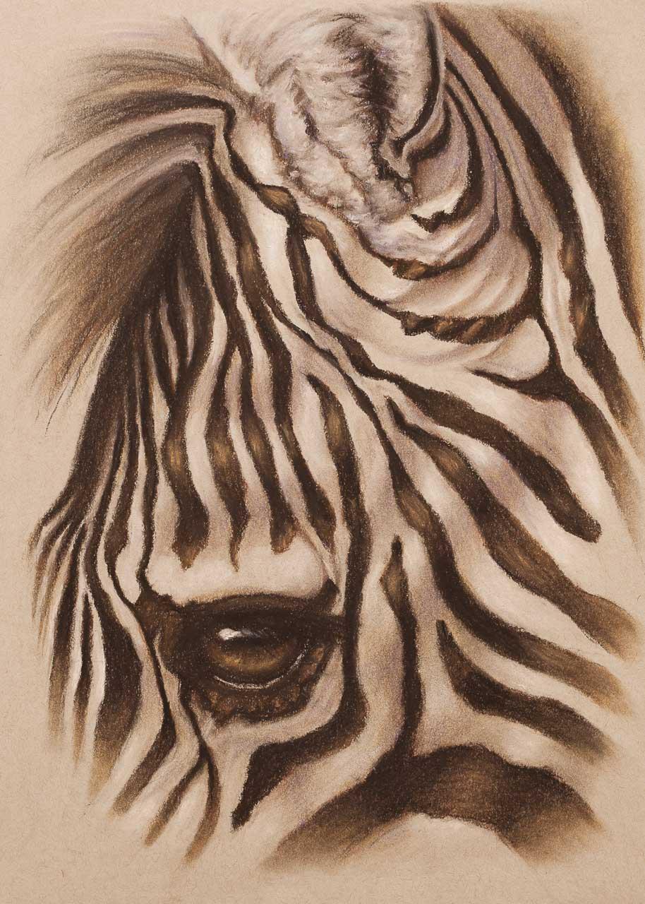 914x1280 Zebra Eye Pastel Prints
