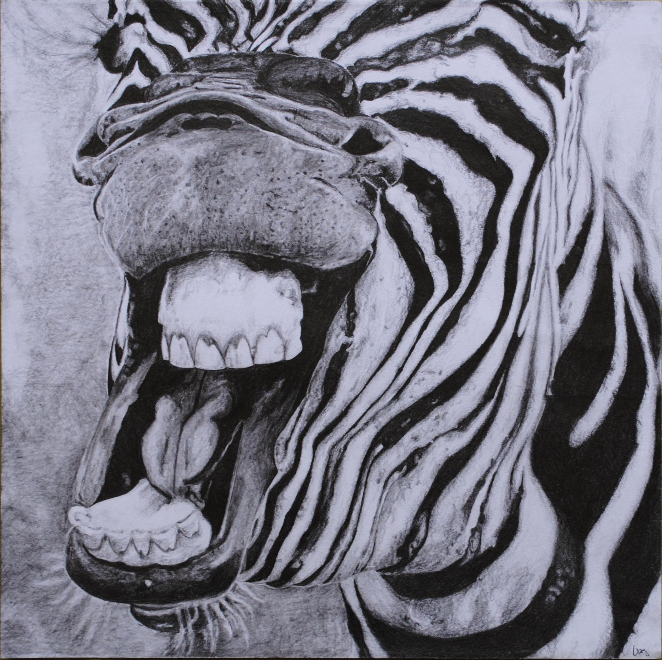 2250x2241 My Own Work Zebra Smile My Inspiration