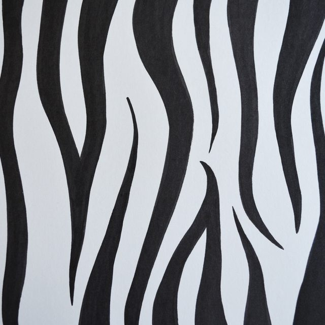 how to draw zebra stripes