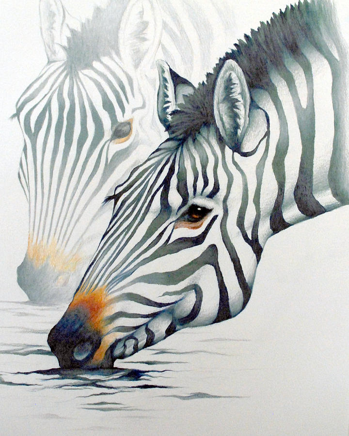 720x900 Drawing By Mary Zins