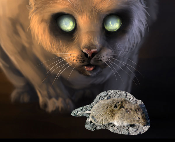 600x488 Digital Painting Lesson Paint A Scary Zombie Cat Using Photo