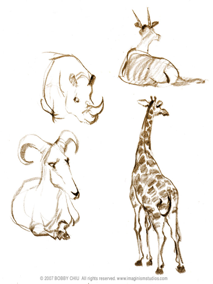 700x932 Sketches From The Zoo By On @
