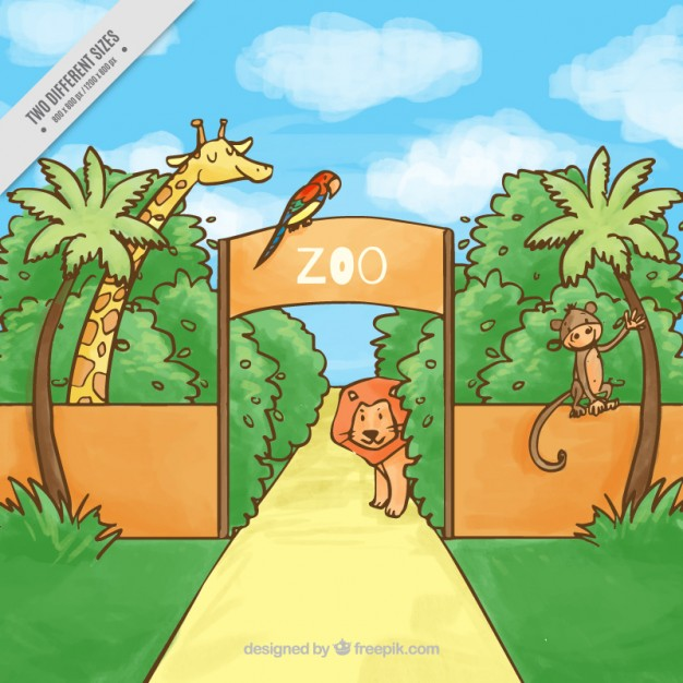 626x626 Hand Drawn Zoo With Animals Background Vector Free Download