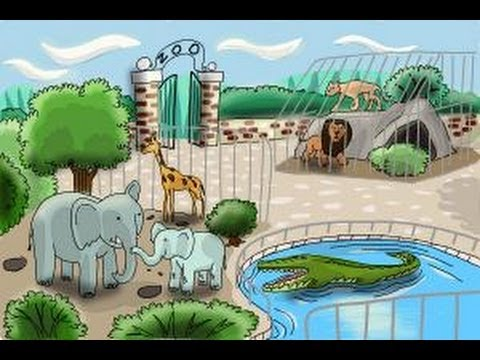 480x360 How To Draw A Zoo