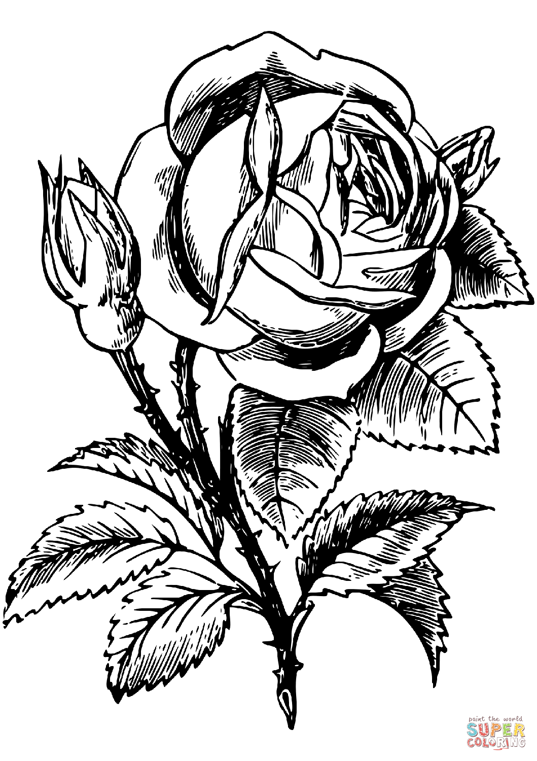 1059x1500 Rose Coloring Page Free Printable Coloring Pages