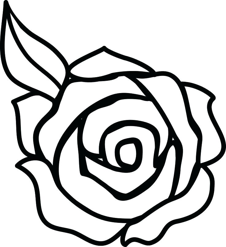 736x807 This Is Roses Coloring Pages Images Roses Coloring Pages 2 Rose