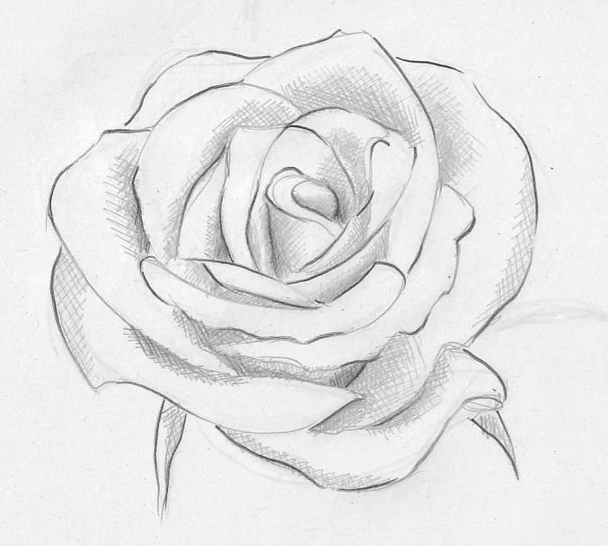 857x769 Rose Welcome To 2 Cute Arts And Crafts