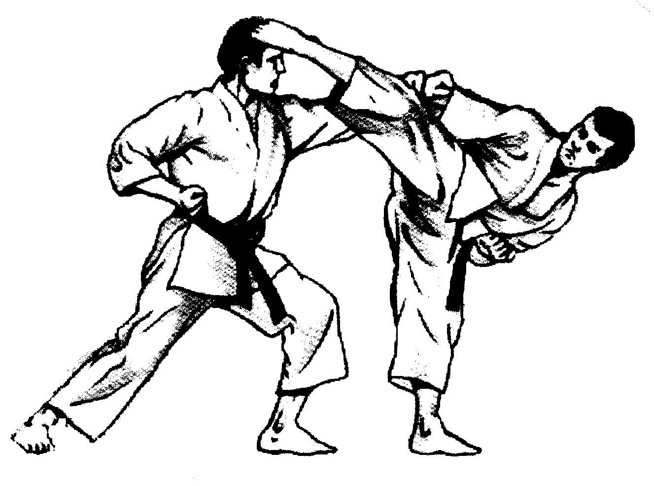 1327x985 Martial Arts Animation