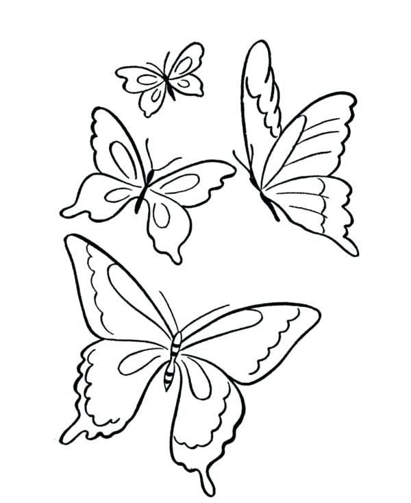 600x734 Butterflies To Draw Butterfly Sketch Butterflies Drawing Pictures