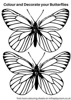 236x333 Printable Monarch Butterfly Coloring Page