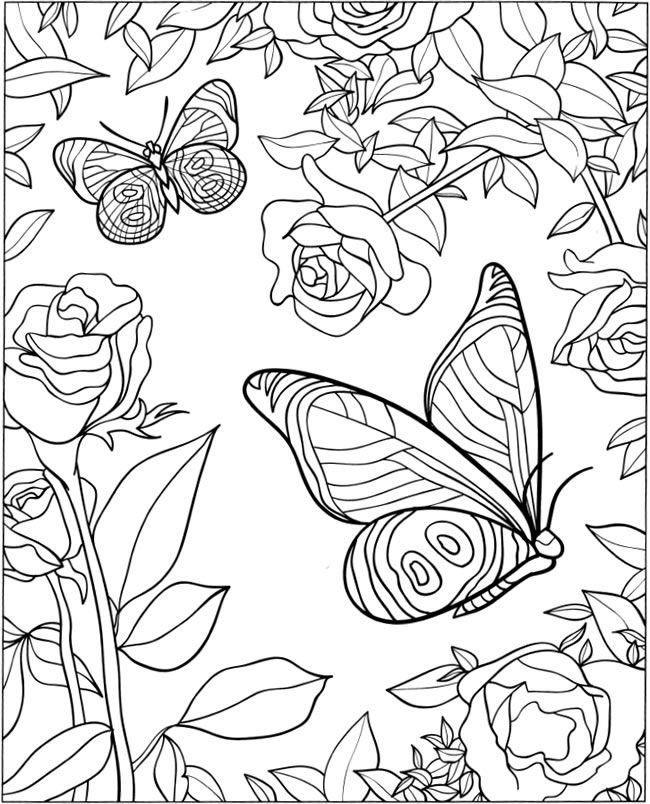 650x804 Welcome To Dover Publications 3 D Coloring Book