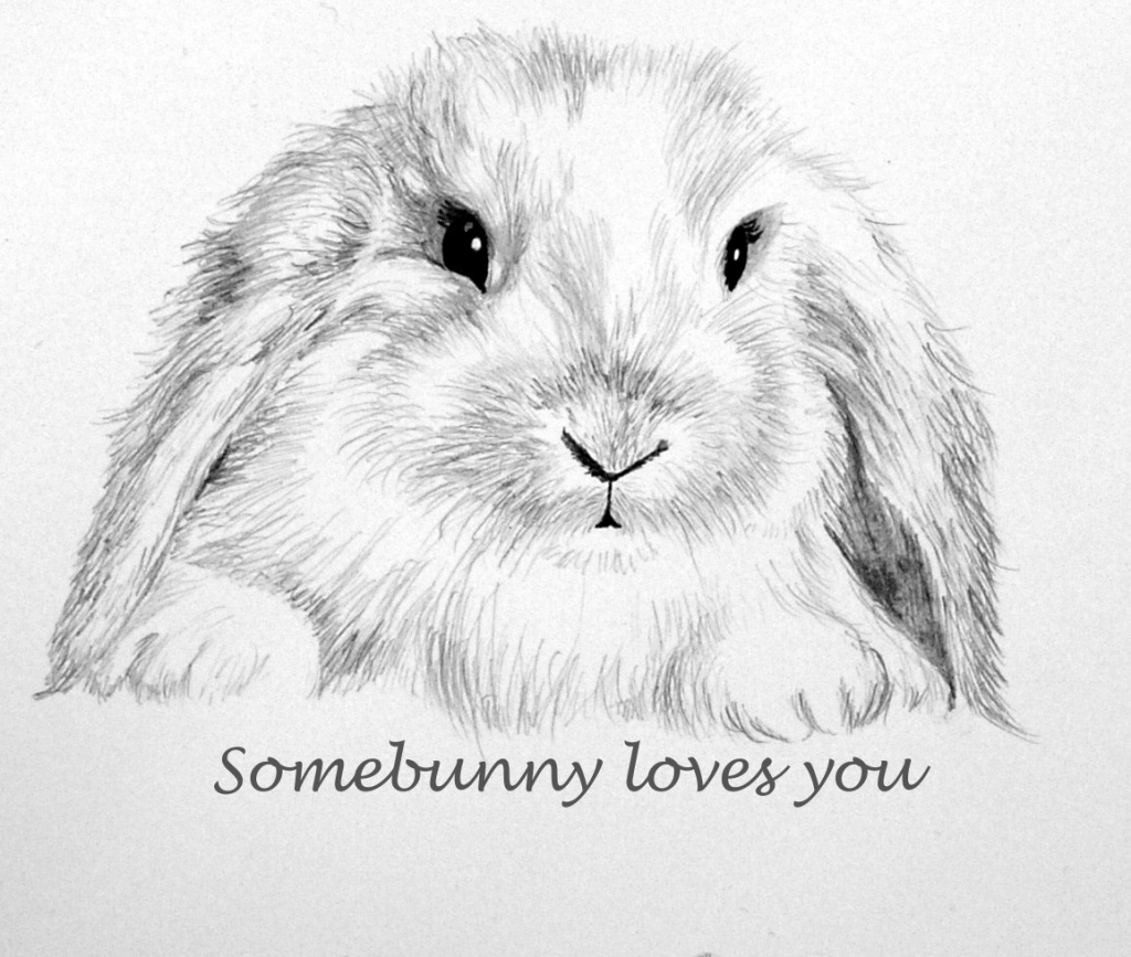 1024x867 Rabbit 3D Pencil Drawing 3D Rabbit Pencil Drawing Drawings Pencils