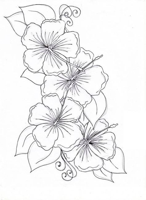 474x652 Hibiscus Flower, Hibiscus Flower Drawing Coloring Page