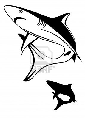 3d Shark Drawing At Getdrawings Com Free For Personal Use 3d Shark
