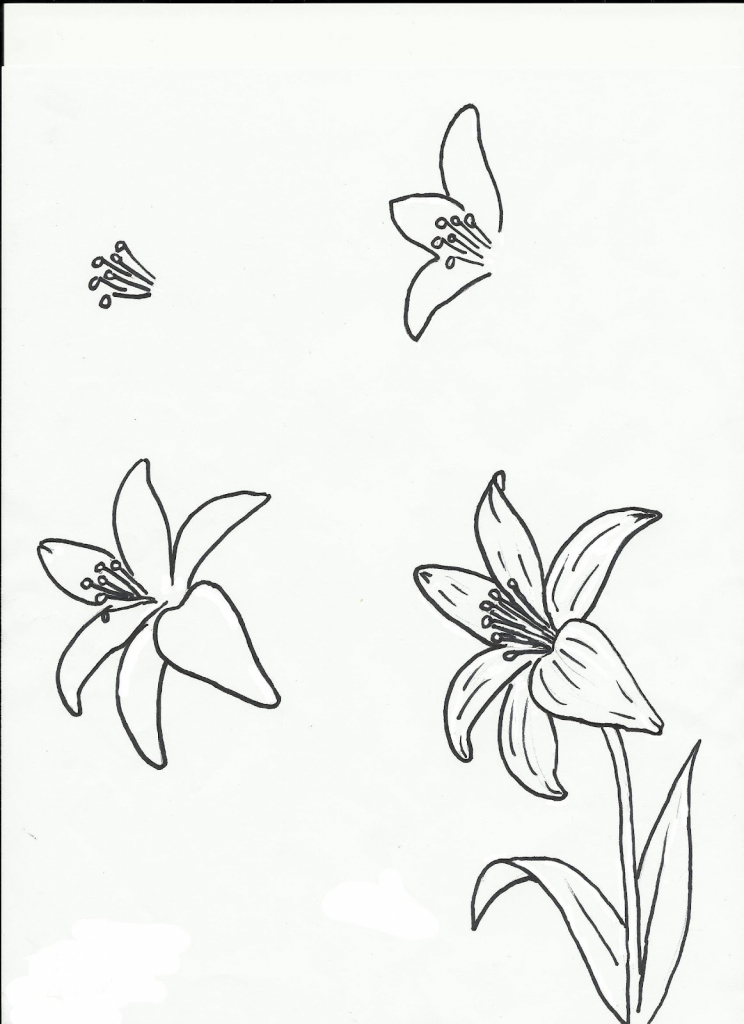 744x1024 3d Flower Drawing Step By Step Simple Flower Drawing How To Draw