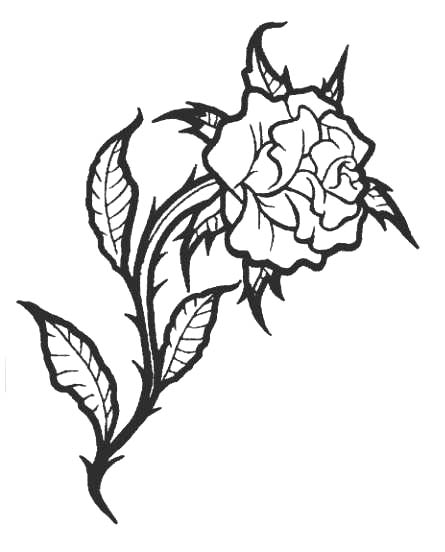 445x552 Sketch Tattoos Rose, Flowers Tattoos Part 1 3d Tattoos Images