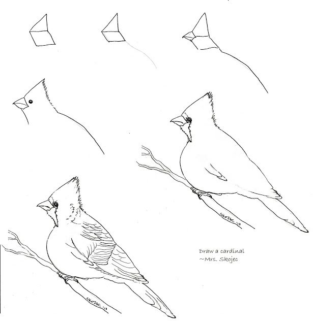 615x640 Draw A Cardinal 2 Art Class Ideas Draw It!