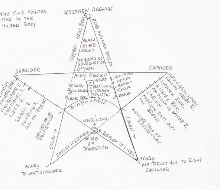 5 Point Star Drawing At Getdrawings Free For Personal Use 5