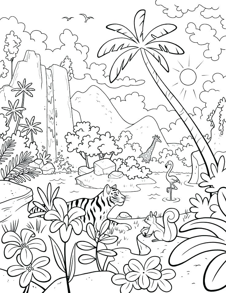 736x952 7 Days Of Creation Coloring Pages 7 Days Of Creation Coloring