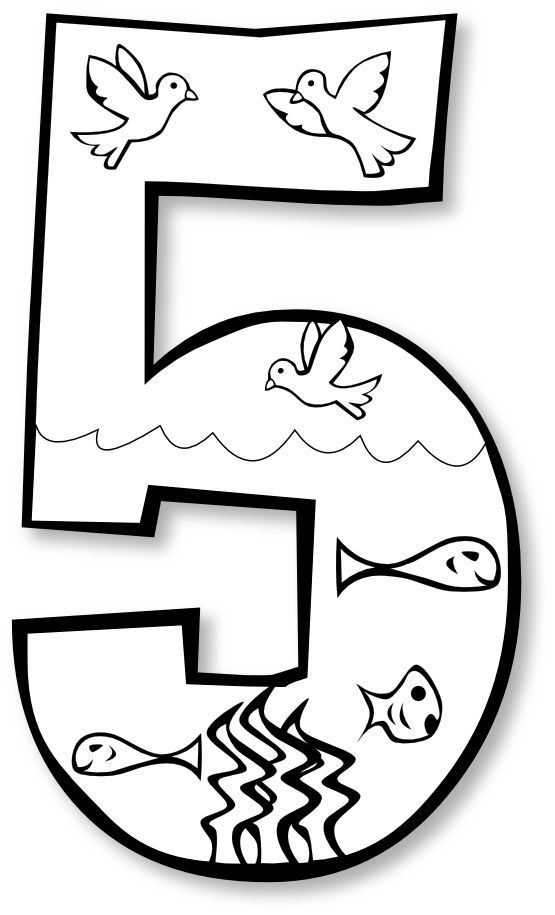 555x915 Gods Creation Coloring Pages Day 2 5 Birds Amp Fish
