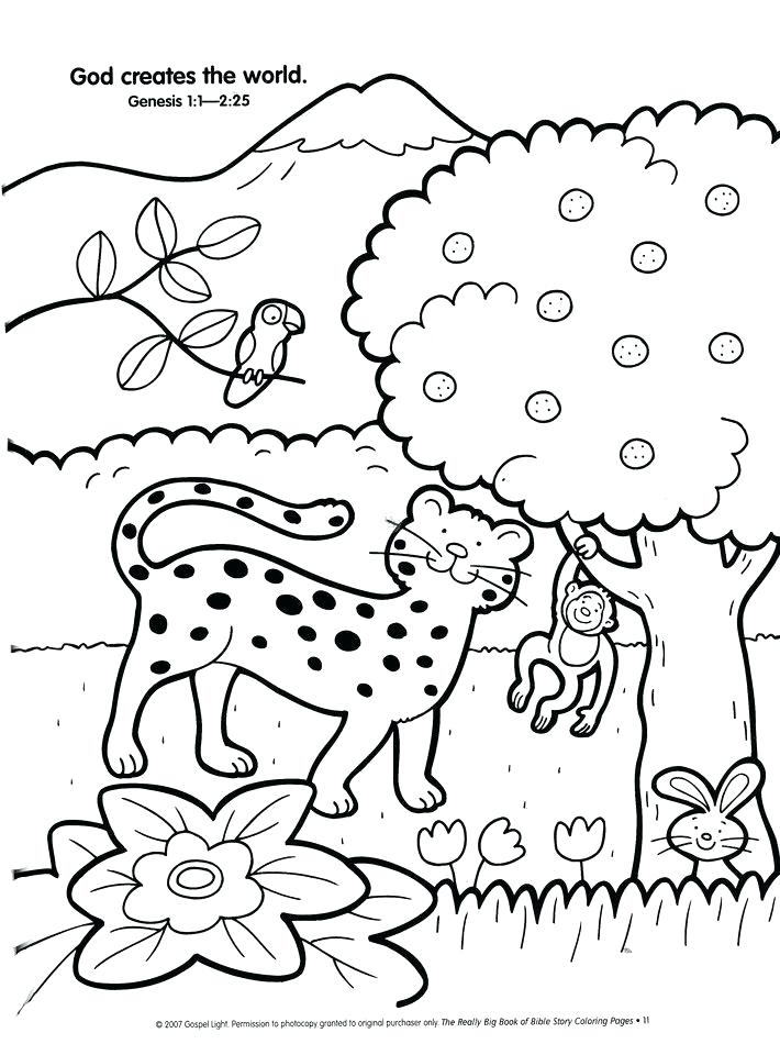 710x950 7 Days Of Creation Coloring Pages As Creation Coloring Pages Kids