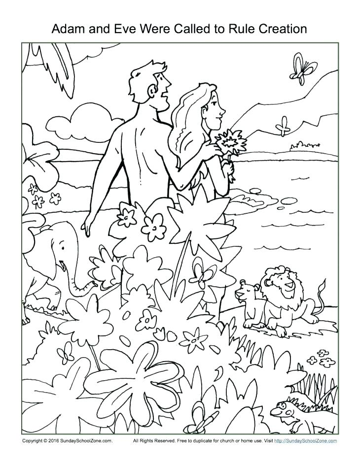 728x942 7 Days Creation Coloring Pages Free