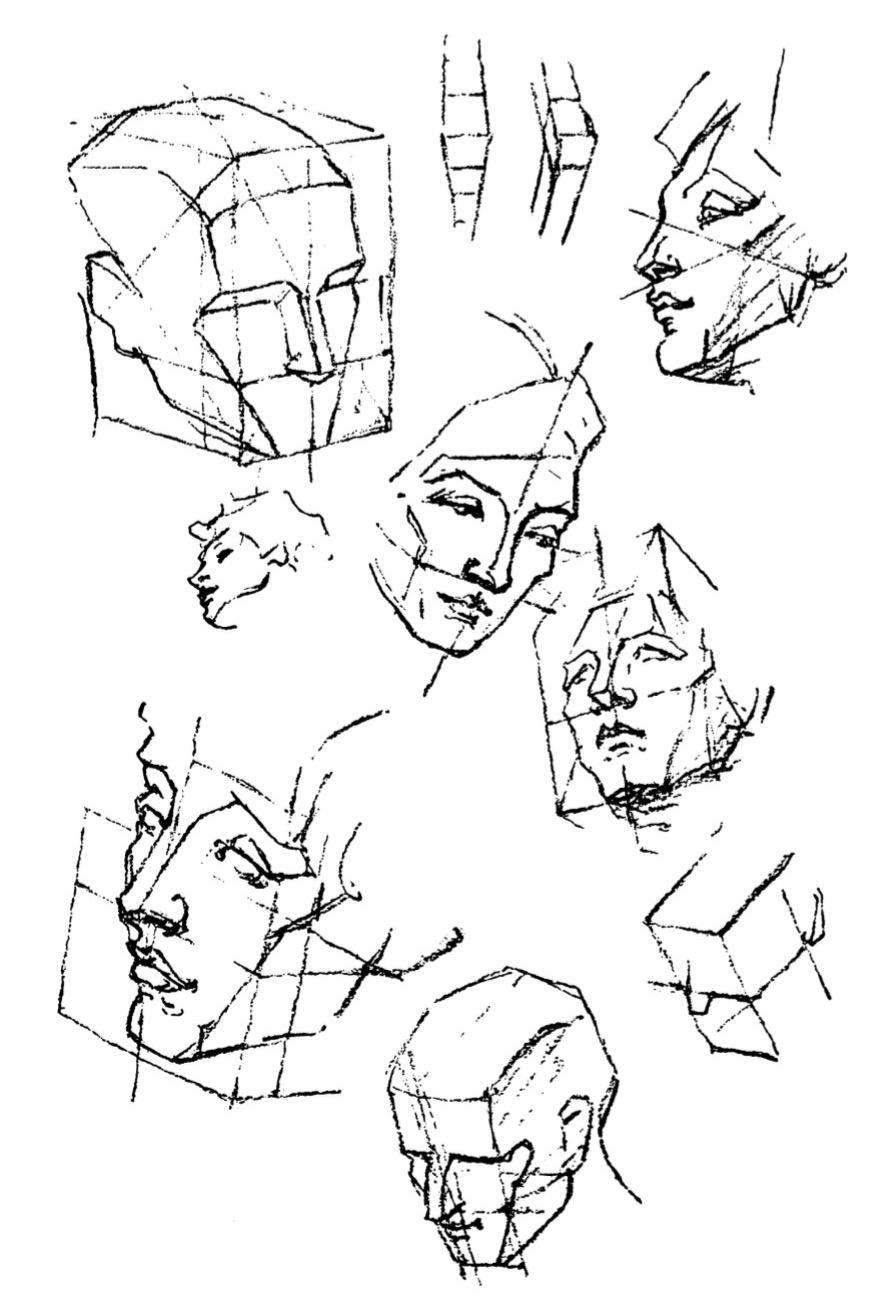 890x1302 Anatomy George Bridgman Drawing Seeing