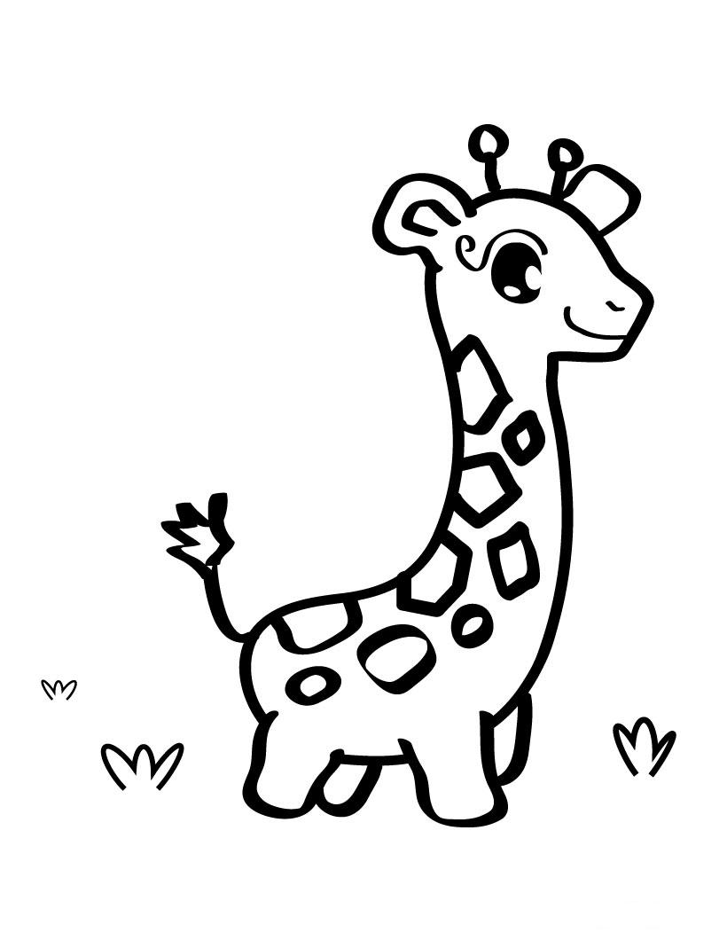 820x1060 Cute Baby Giraffe Coloring Page For The Kids