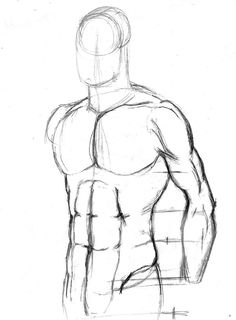 236x320 Proko How To Draw Abs How To Draw Basic Drawing