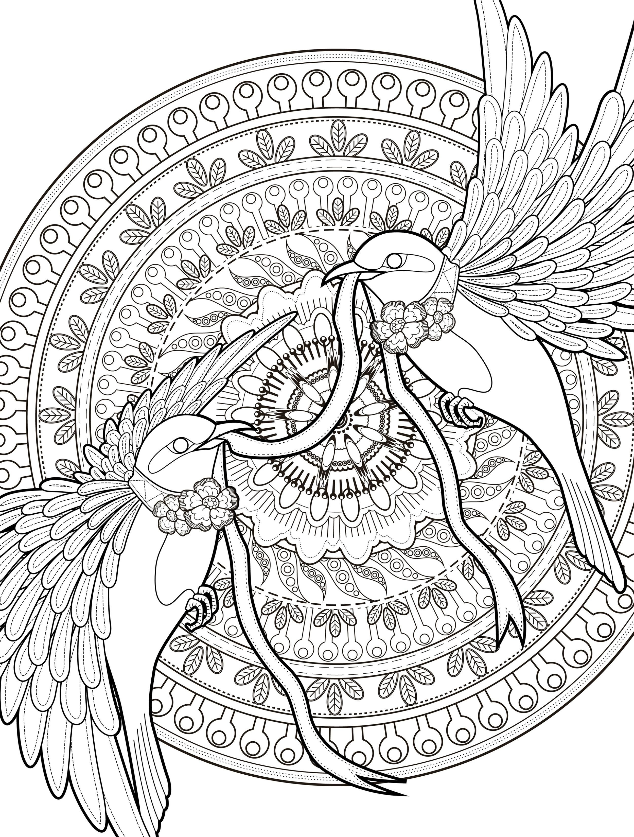 2500x3300 Abstract Bird Coloring Pages Coloring Sheets
