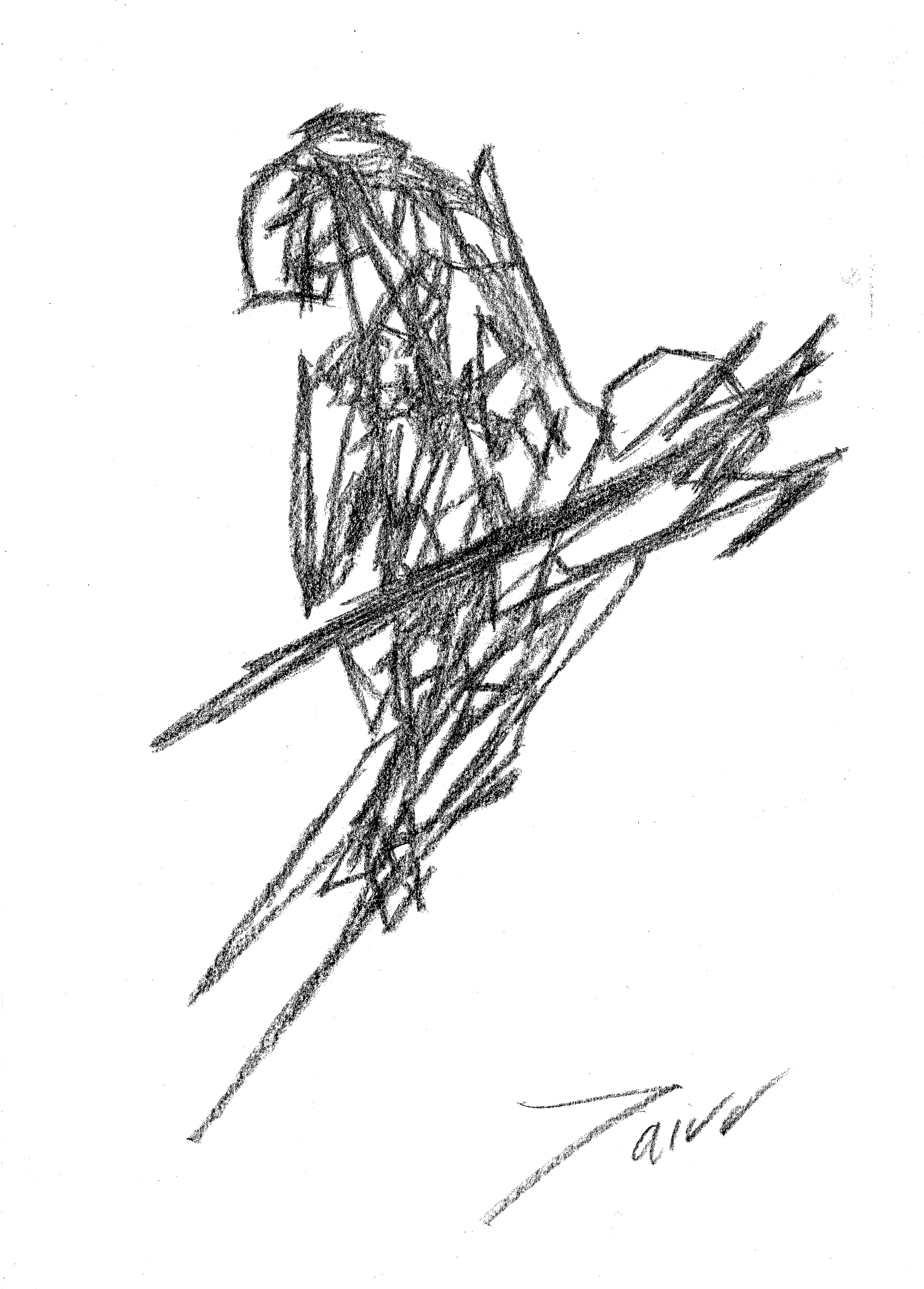 4950x6906 Tairo Ruiz Artist Marbella Sketches