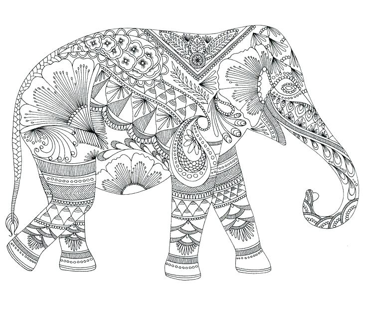 736x665 Elephant Coloring Page Mandala Pages Printable Adult