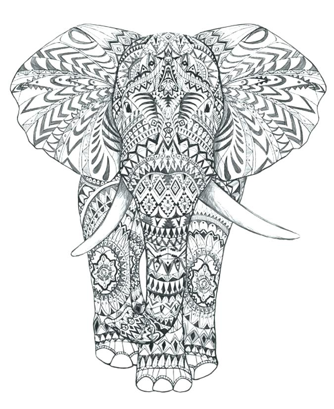 675x825 Free Elephant Coloring Pages For Adults Online Indian