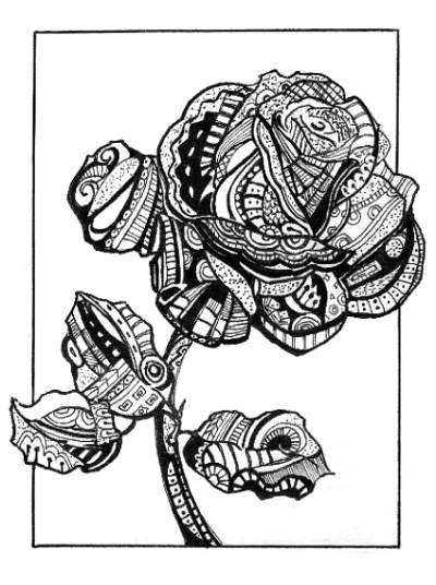 400x536 Abstract Rose Teen Pen Amp Ink About Abstract, Nature, Abstract