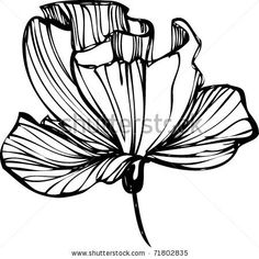 236x236 Flower Drawings Abstract