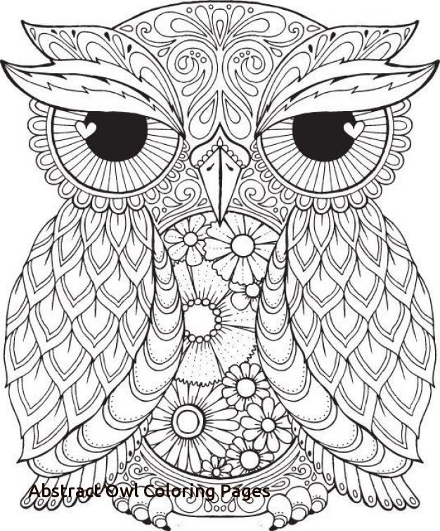 Abstract Owl Drawing