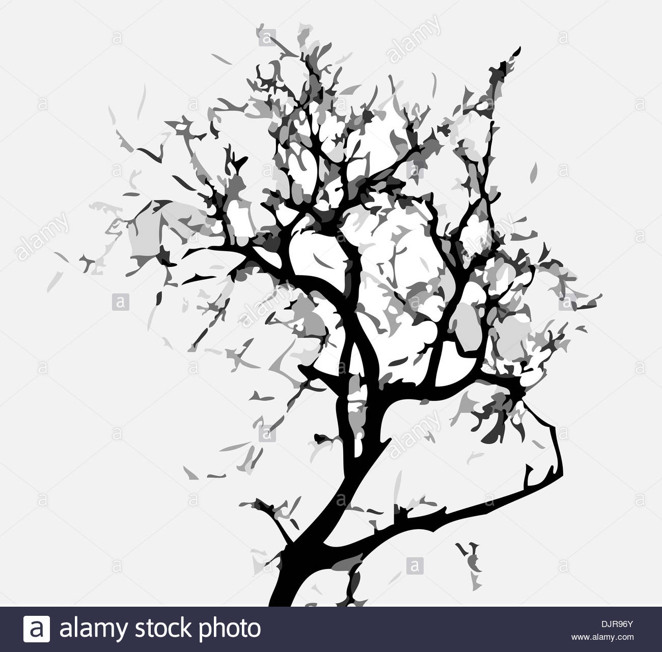 1300x1280 Abstract Tree , Tree, Tree Silhouette, Abstract Leaf, Tree Stock