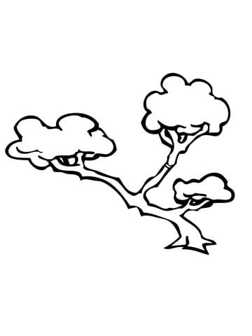 360x480 Bonsai Tree Coloring Page Free Printable Coloring Pages