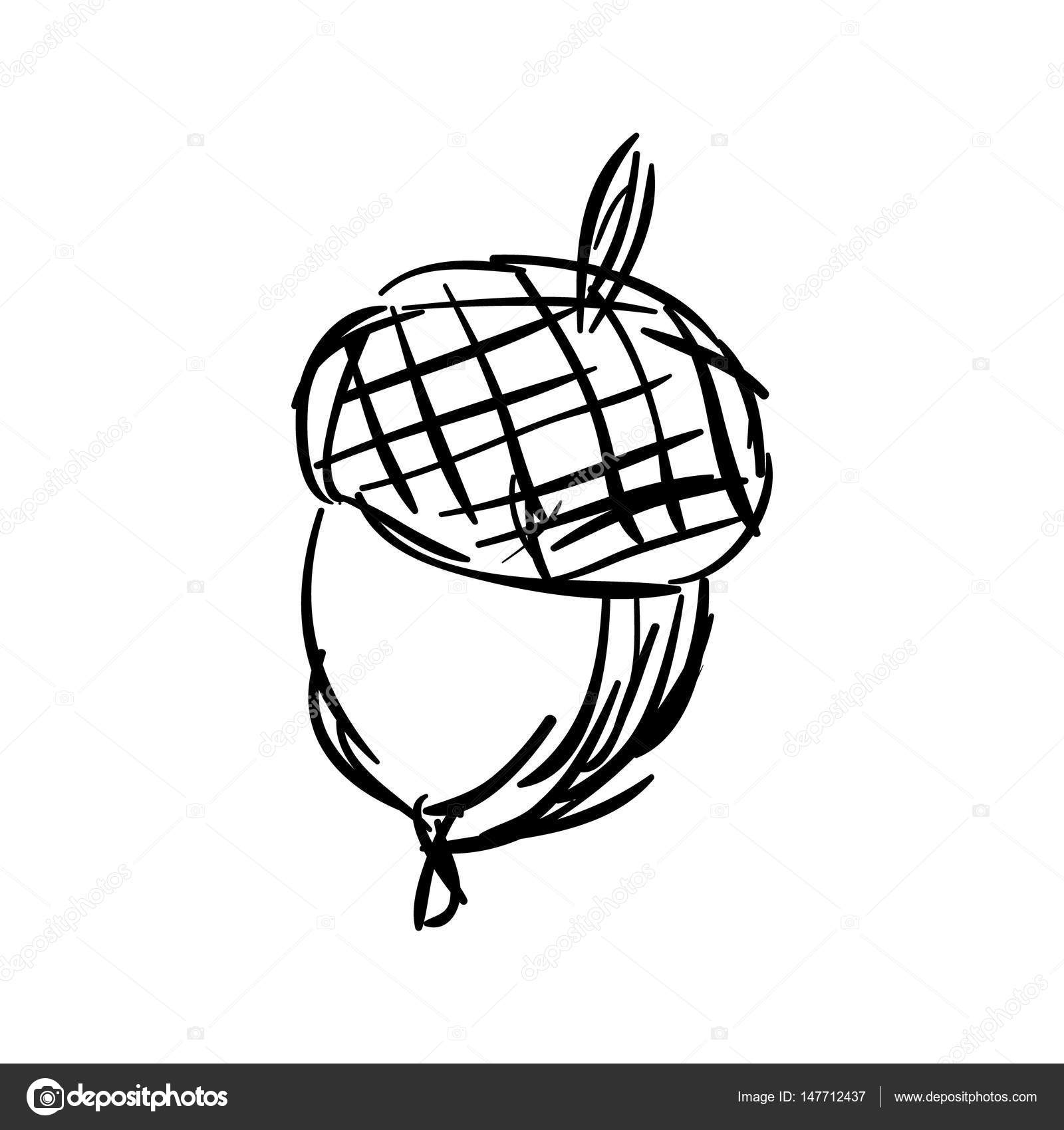 1600x1700 Sketch Of Hand Drawn Acorn Stock Vector Altelia