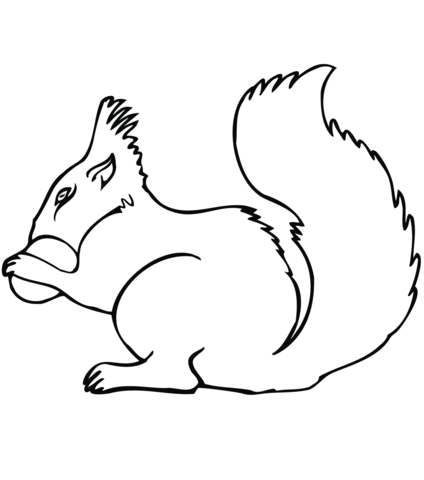 424x480 Squirrel With Acorn Coloring Page Free Printable Coloring Pages
