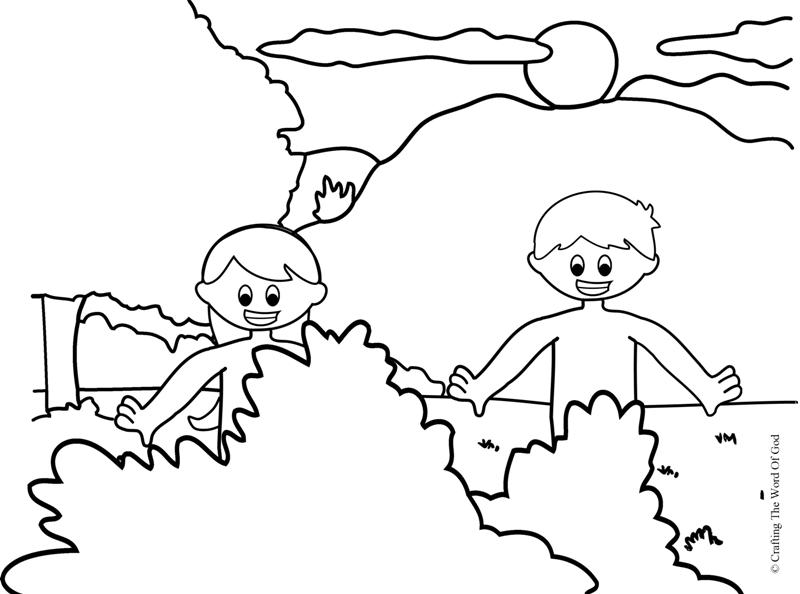 800x594 Adam And Eve Coloring Page Crafting The Word Of God