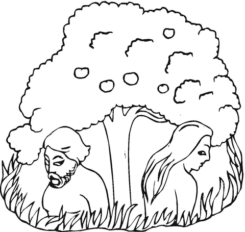 480x455 Adam And Eve Under The Tree Coloring Page Free Printable
