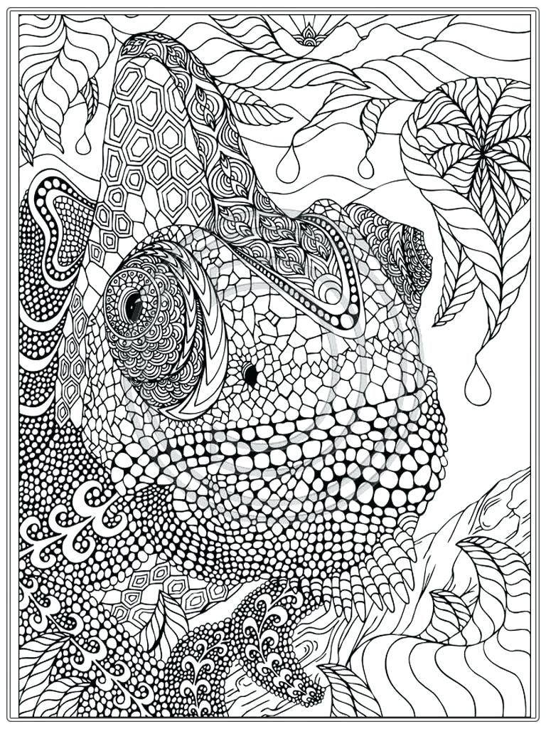 768x1024 Free Printable Advanced Coloring Pages