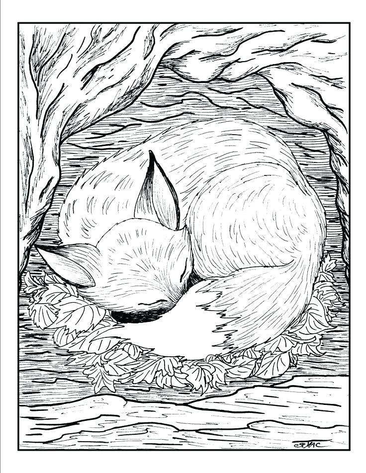 736x952 Free Printable Coloring Pages For Adults Advanced