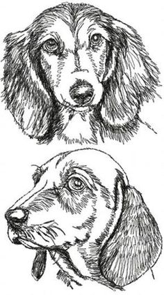 236x423 Drawing Sausage Dogs