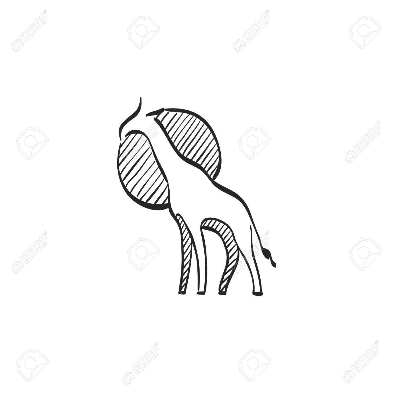 1300x1300 Giraffe Icon In Doodle Sketch Lines. Animal Mammal Herbivore