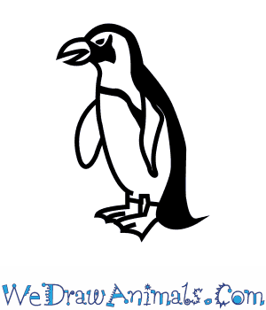 300x350 How To Draw An African Penguin