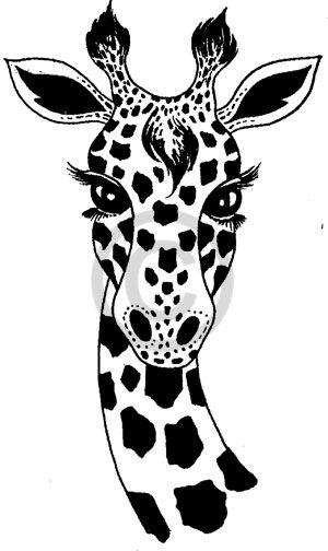 African Animal Drawing